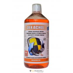 DEXACHOL 1l – ochrona i regeneracja wątroby