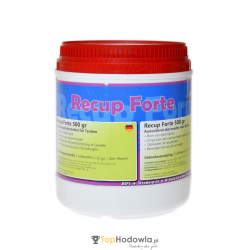 RECUP FORTE 500g