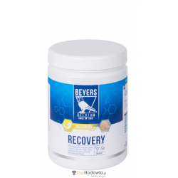 RECOVERY 600g