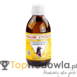 FULLOL-ENERGY 250 ml