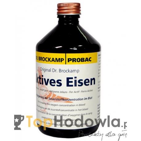 Aktives Eisen 500 ml